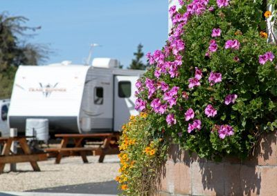 Le Sage Riviera RV Park in Grover Beach, CA is ready for you.